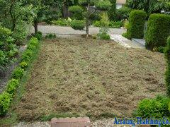 Picture of thatched lawn 1